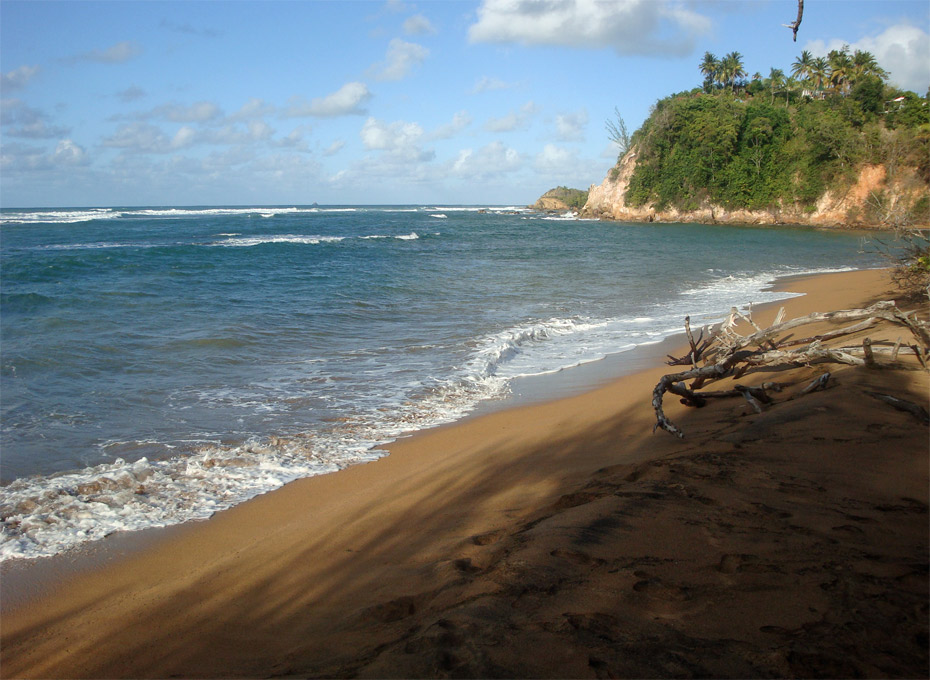 Photo Plage Pointe Rouge © Guidemartinique.com
